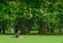 Photo of Зелените оази во Келн