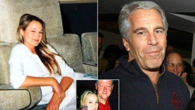 Photo of Се бара список со имиња на многу славни личности кои летале со авионите на осудениот педофил Епстајн