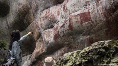 Photo of Фотографија на денот: Сензационални ѕидни цртежи од леденото доба