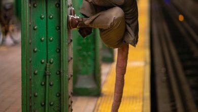 Photo of ГАЛЕРИЈА: Неверојатните луѓе во њујоршкото метро