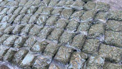 Photo of МВР: Разбиена организирана криминална група нарко-дилери, приведени шест лица, запленета дрога вредна над 800 илјади евра