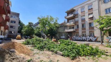 """Photo of Кога пилите ќе стивнат"""": Утре ќе се протестира против сечата на дрвја на """"Орце Николов"""""""