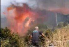 Photo of (Видео) Голем пожар во Дојран – викендици во опасност