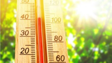 Photo of Високи утрински температури и предупредување за заштита од топлотен бран – земјава е во портокалова фаза