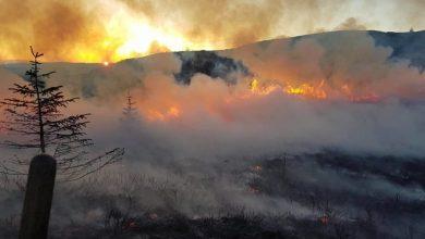 Photo of (ФОТО) Изгаснат пожар на Водно, Град Скопје апелира на внимателност