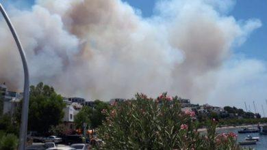 Photo of Аваз: Пожар над хотел во Бодрум каде се сместени туристи од БиХ и Србија