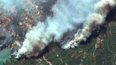 Photo of Над 400 повредени во големите пожари во Турција