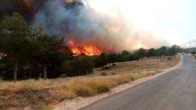 Photo of Хеликоптери на Армијата се упатија да помогнат во гаснењето на пожарот во Кочани