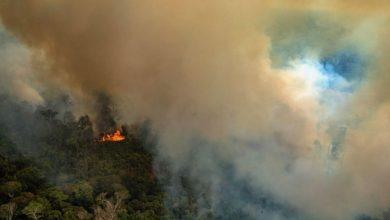 Photo of Нов шумски пожар кај Патра, евакуирани се четири грчки села