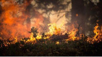 Photo of Пожар беснее во Јакутск, се шири отровен чад