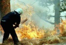 Photo of Шумски пожар беснее западно од Барселона, уништени 1.100 хектари