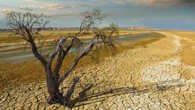 Photo of Студија: Климатските промени предизвикуваат поекстремни временски услови