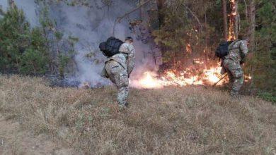 Photo of Пожарот во делчевско Пасјак зафати дел од куќите, населението евакуирано