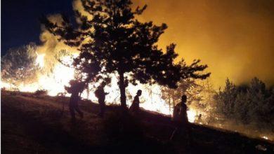 Photo of Гасењето на пожарот во село Умлена отежнато поради непристапниот терен