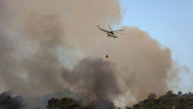 Photo of Најмалку осуммина загинати во пожарите во Турција