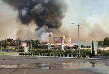Photo of ВИДЕО: Пожарот кај Богородица опасност за казиното Фламинго и една бензинска пумпа. Побарана помош од Грција