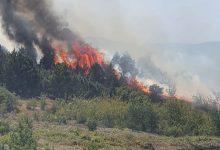 Photo of ВИДЕО: Пожар во близина на граничниот премин Богородица