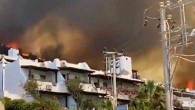 Photo of Во пожарите во Турција загинаа осум лица, активни 11 пожари, изгаснати 153