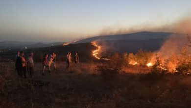 Photo of Пожарот утрово го гаснат два хеликоптера, а Вучиќ ќе ни прати уште четири