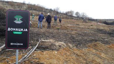Photo of На Halk Velo Green од 233 учесници се собраа 184.500 денари наменети за пошумување