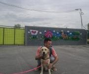 Photo of Лајка го пронајде кучето по кое сопственикот трагаше три недели