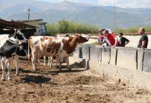 Photo of Кондовски во посета на селото Меџитлија за да слушне што земјоделците бараат и очекуваат од идната локална самоуправа