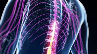 Photo of Д-р Барбов: За спинална мускулна атрофија имаме терапија а со тоа и голема надеж за пациентите