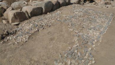 Photo of Во Турција откриен најстариот мозаик во светот
