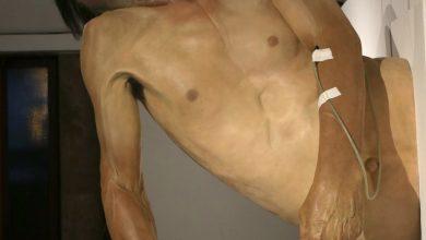 Photo of Скулпторот Жарко Башески ќе изложува во миланската Кралска палата