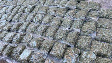 Photo of Притвор за скопјанец осомничен за трговија со над 45 килограми марихуана